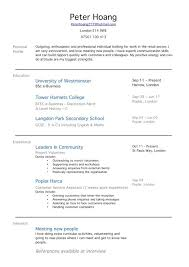 Resume Sample For First Job by Download First Time Resume Haadyaooverbayresort Com