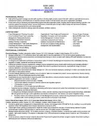 resume summary examples entry level commercial real estate resume writer professional commercial real estate broker templates to showcase breakupus entrancing free resume samples amp writing guides