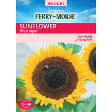 What Is Flower Food by Shop Flower Seeds At Lowes Com