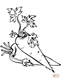 carrots coloring pages free coloring pages