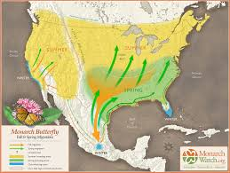 Sierra Madre Occidental Map Monarch Watch Blog Archive Two Way Monarch Migration Map