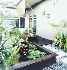 A Lush Garden In Your Living Room