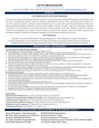 inside sales resume   Template   inside sales resume