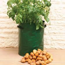 let u0027s start vegetable gardening in bags