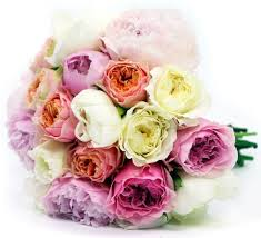 Flowers Delivered Uk - best 25 flower delivery uk ideas only on pinterest chaenomeles