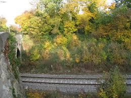 Wolvercote Halt railway station