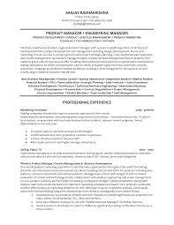 Managing Director Resume  director level resume  marketing