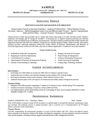 Project Management Consultant Resume samples   VisualCV resume