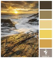Color Swatches Paint by Rocky Glow Grey Slate Beige Brown Sand Cream Gold Yellow