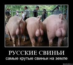 Эксперт о самых больших потерях в 2012 году: Украина отдаляется от ЕС, скатываясь к интеграции с Россией - Цензор.НЕТ 6572