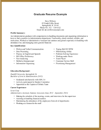resume summary ideas example of a resume summary examples of       sample resume