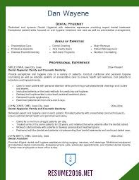 dentist resume sample dental resume sample curriculum vitae dentist sample  cv templates