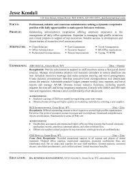 Career Summary  resume examples  job resume objectives       career change resume