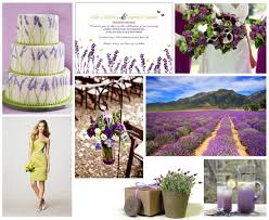So first the lavender photo 3059616-5