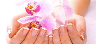 beauty salon u0026 spa in omaha ne minabella beauty resort