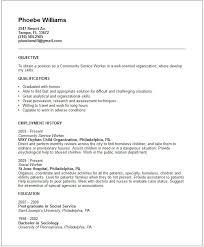 High school community service essay example   reportz    web fc  com High school community service essay example