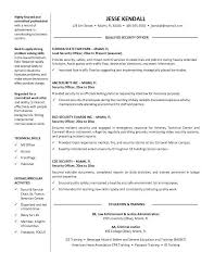 Resume Statement Examples Sample Profile Statement For Resumes     general resume objective samples   Template   general resume objective statements