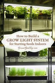 how to start an indoor garden gardening ideas
