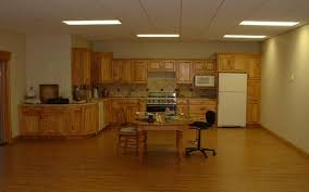 Track Lighting For Kitchens by Basement Attractive Image Of Basement Design And Decoration Using