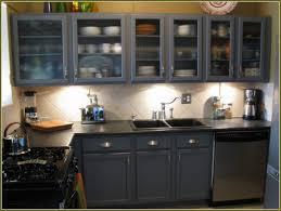 Rustoleum Kitchen Cabinet Paint Kitchen Furniture Literarywondrous Kitchen Cabinet Paint Kit