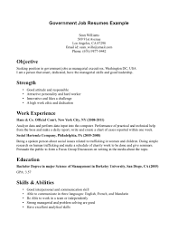 Sample Of Work Resume by Example Of Job Resume Resume For Your Job Application