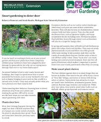 How To Keep Deer Out Of Vegetable Garden by Smart Gardening To Deter Deer Msu Extension