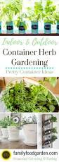 458 best herb gardening culinary and medicinal images on