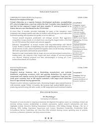 Example Business Resumes project report writing template  blank