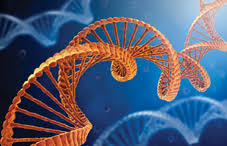 Five major psychiatric disorders share genetic links
