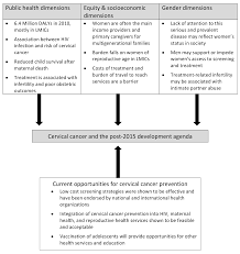 Reproductive and Maternal Health in the Post      Era  Cervical     PNG