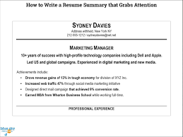 Resume Summary Examples For Students  cv career objectives     My Perfect Resume