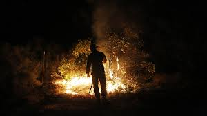 Willow Wildfire California by 8 300 Acre Wildfire North Of Napa Valley Forces Residents To Flee