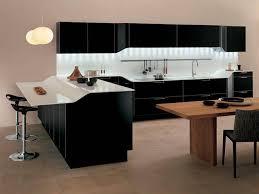 Black Kitchen Designs Photos Modern Kitchen Pics Zamp Co