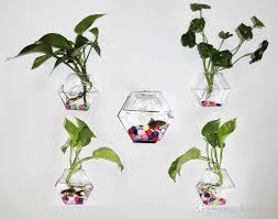 hexagon glass wall planter vase wall glass fishbowl wall decor for