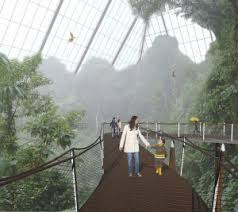 in Rainforest Pyramid