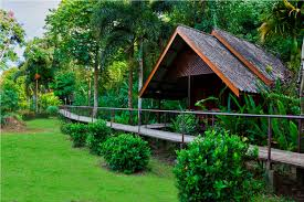 khao sok riverside cottages accommodation and tours