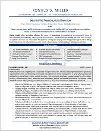 example of federal government resume another executive sample resume executive resume resumewriters healthcare resume builder resume healthcare sales resume example executive resume samples sample resume for healthcare sample resume for healthcare resume