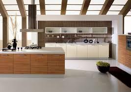 Kitchen Cabinets Nashville Tn by Astonishing Modern Kitchen Cabinets Nashville Tn Tags Modern