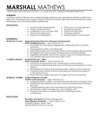Unforgettable Assistant Director Resume Examples to Stand Out     Assistant Director Resume Sample