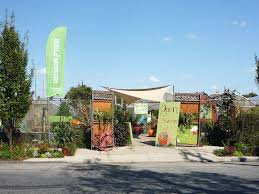 philly u0027s best local plant shops and garden centers