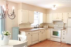 Kitchen Cabinets Inside Kitchen Cabinets White Cabinets Inside Small Kitchen Setting