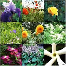 couleur feng shui des couleurs dans mon jardin feng shui le jardin feng shui