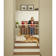 Bifold Closet Door Locks by Shop Child Safety At Lowes Com