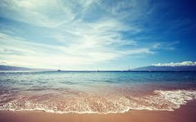 شاطئ البحر images?q=tbn:ANd9GcS