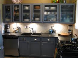 Kitchen Cabinet Decor Ideas by Decorating Your Home Design Ideas With Luxury Awesome Glass Door