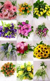 Flowers For Each Month - monthly flowers images reverse search