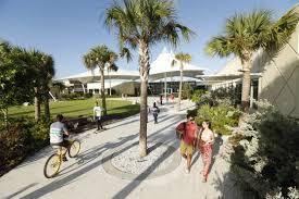 summer program pre college at eckerd marine science on florida u0027s