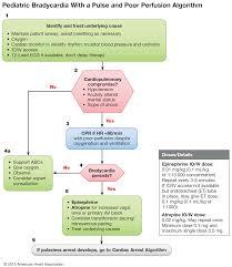 part 12 pediatric advanced life support u2013 ecc guidelines 2015