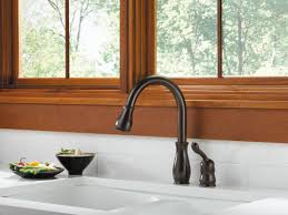 Delta Kitchen Faucet Installation 100 Delta Kate Kitchen Faucet What U0027s The Best Pull