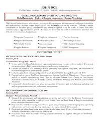 Real Estate Agent Job Description For Resume  real estate resume     Real Estate Resume  malia obama summer internship  real estate job